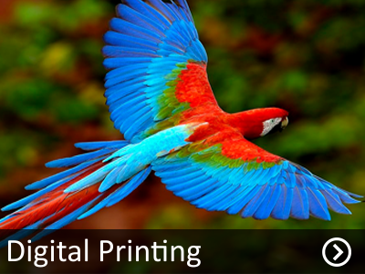 digital-printing-sri-lanka